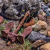 Rusted Sea Anchor