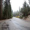 sequoia general grant