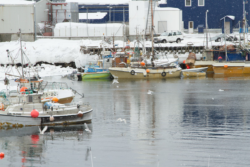 The Harbor in Paamuit, Greenland.