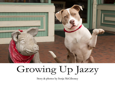 V2 Grow Up Jazzy cover