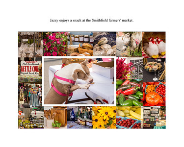 Jazzy Explores Smithfield page 25 market