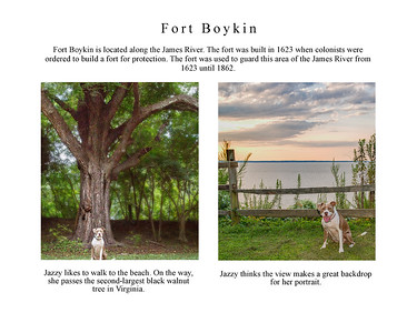 Jazzy Explores Smithfield page 18 Ft Boykin