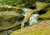 Cascade along the Glen Burney Trail<br /> Blowing Rock, NC