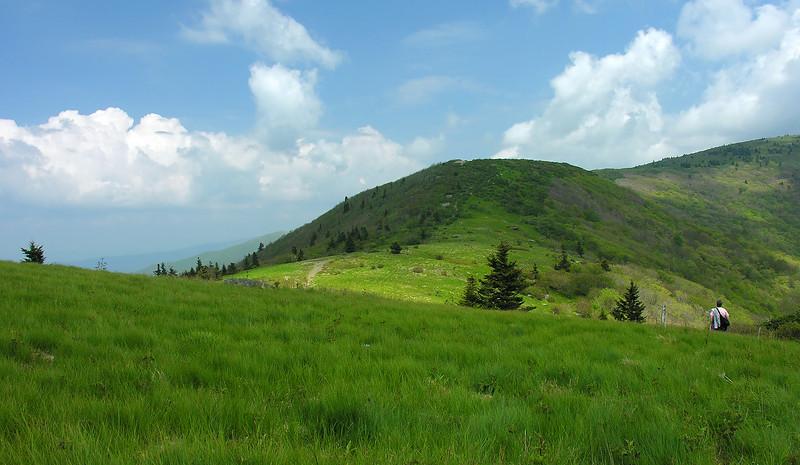 Applachian Trail through grassy balds<br /> Carvers Gap, Pisgah-Cherokee National Forest, NC