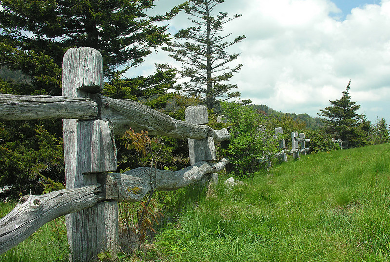 Applachian Trail trailhead<br /> Carvers Gap, Pisgah-Cherokee National Forest, NC/TN border