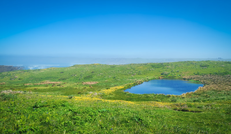 A small pond along Tomales Point