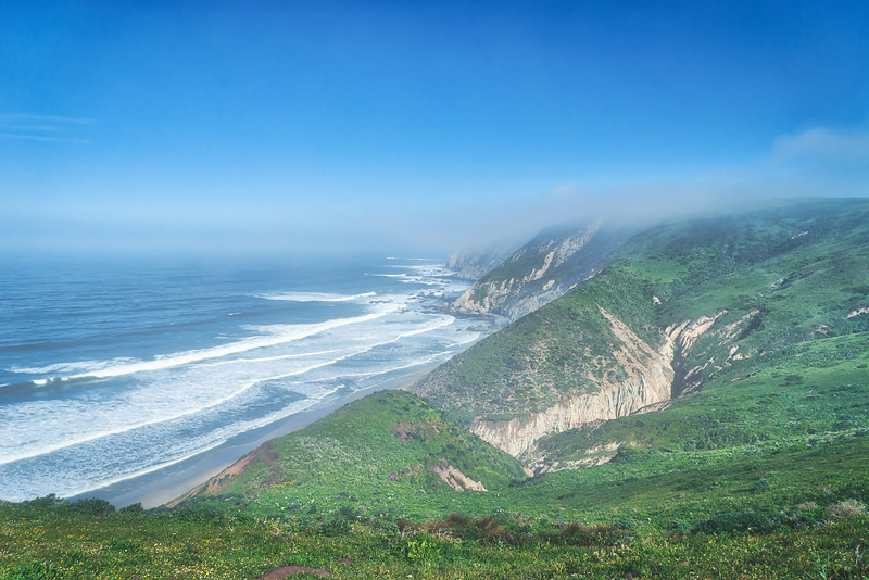 Point Reyes Coastline