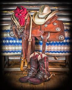 """Lone Star Saddle"""