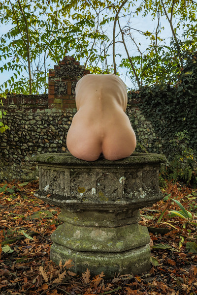 Fine Art Nude - Colour