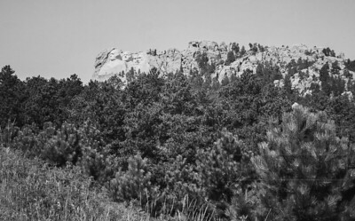 Mount Rushmore and Black Hills