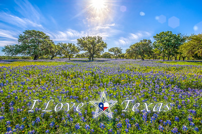 """I Love Texas - Heaven Shine"""