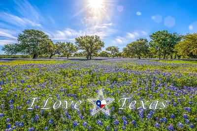 """I Love Texas - Heaven Shine"""