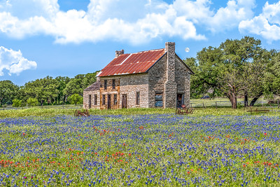 """Bluebonnet Homestead"""