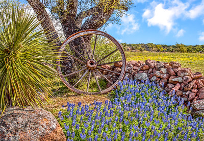 """Hill Country Wagon Wheel"""