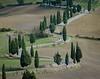 Tuscany, Italy DP-01494A