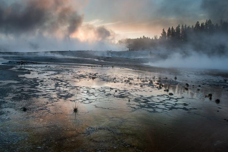 Yellowstone National Park, Wyoming  DP-0426B