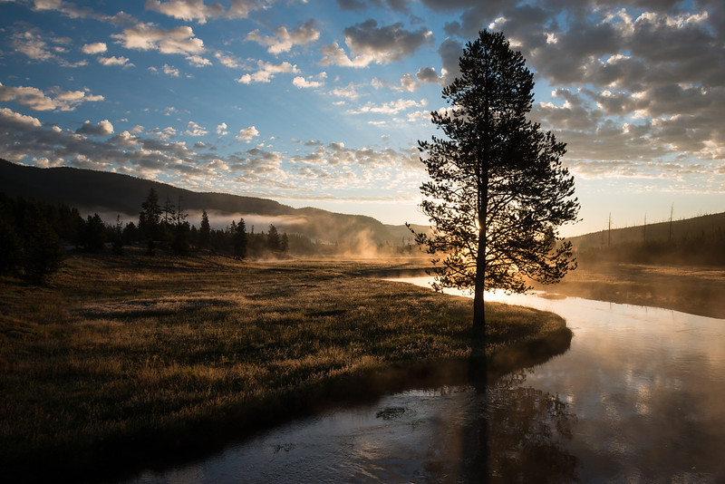 Yellowstone National Park, Wyoming  DP-9918B