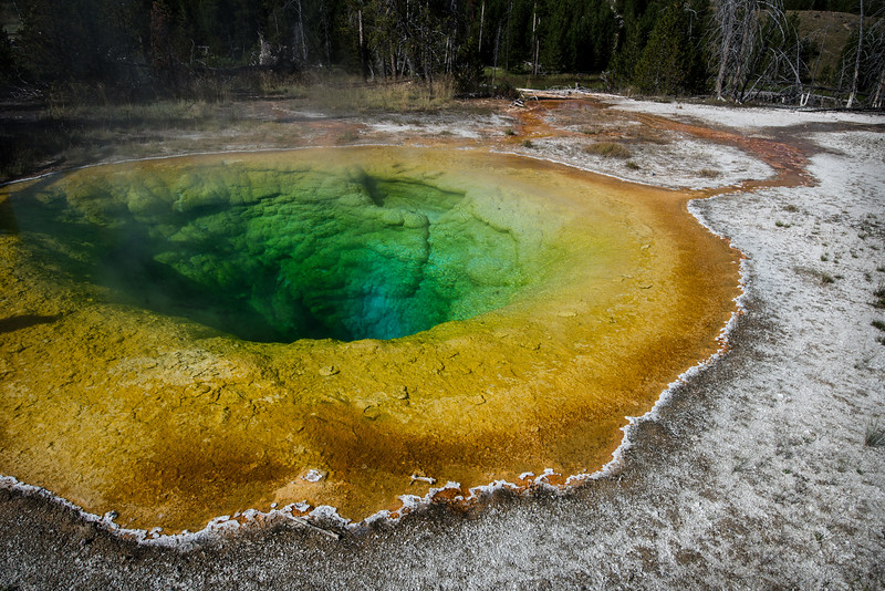 Yellowstone National Park, Wyoming  DP-0022B