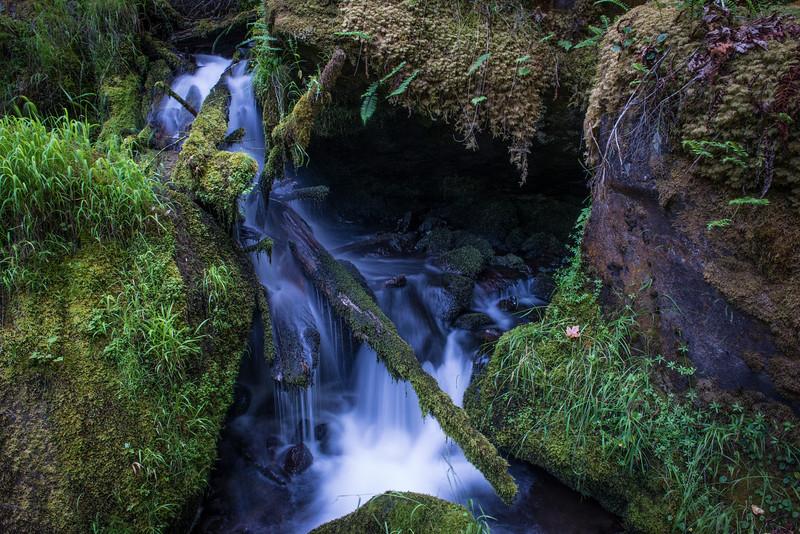 Umpqua, Oregon  DP-7765B