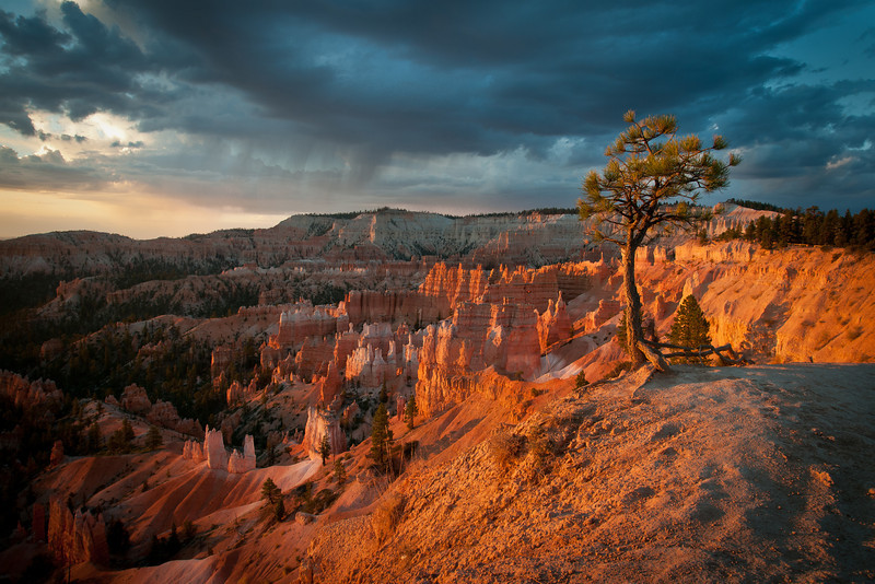 Bryce Canyon, Utah DP-1312B