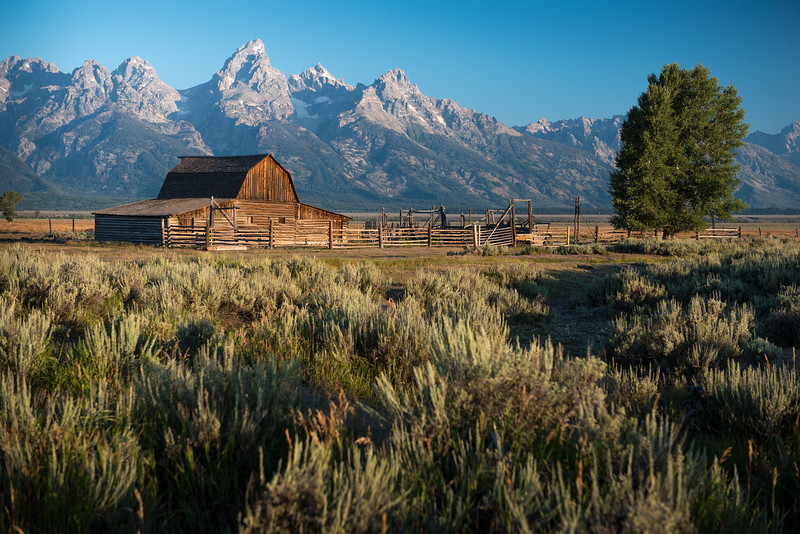 Grand Teton, Wyoming  DP-0585B