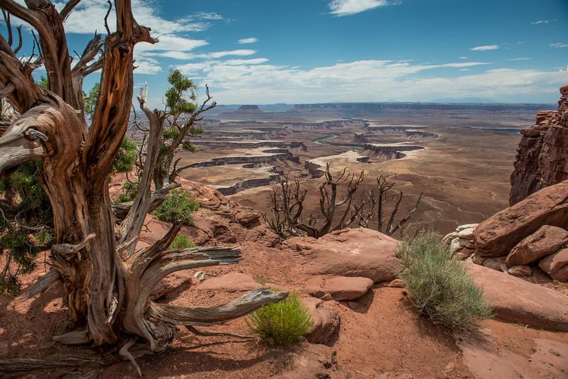 Canyonlands National Park, Utah  DP-7401B