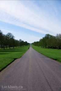 The Long Walk runs through Windsor Great Park and is almost 3 miles long.