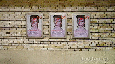 "London is... ""Who'll love Aladdin Sane?"""