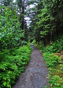 ALS_1099-adj-Trail