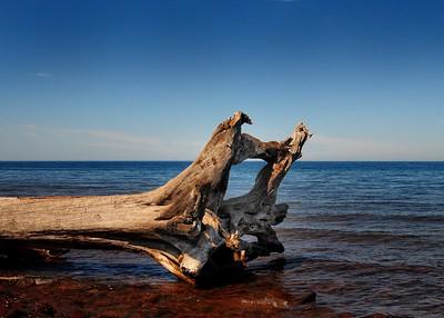 PSP_0218-7x5-Driftwood
