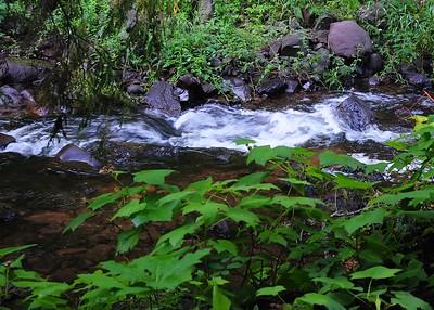PSP_0092-7x5-Creek