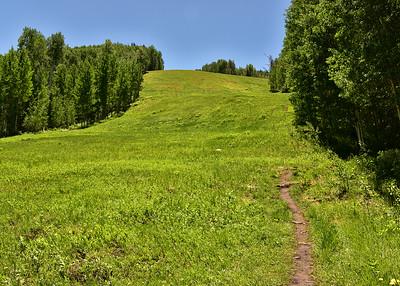 NEA_3608-7x5-Vail Ski Slop