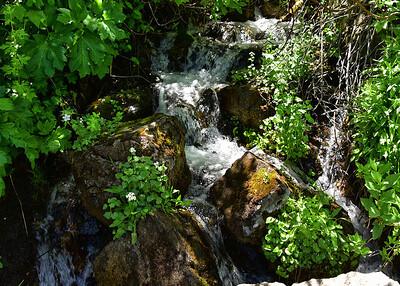 NEA_3599-7x5-Creek-Vail