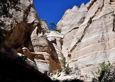 NEA_0129-7x5-Tent Rocks