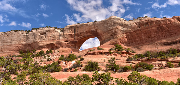 NEA_1201-Wilson Arch