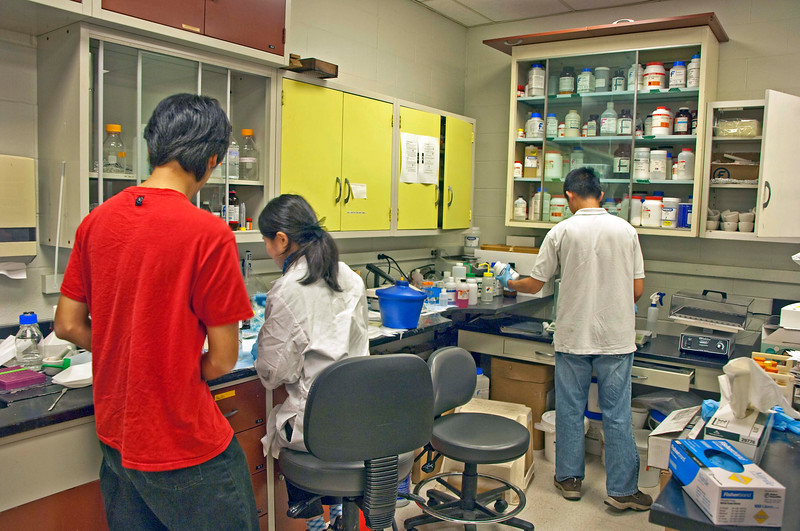 """Photo: Researchers at work in one of the research laboratories in Plant Pathology Building on the Ohio Agricultural Research and Development Center campus.<br /> <br /> Role in Wayne County's Ag-Bio Cluster: International leader in agricultural research and development, new business incubator, higher education leader, agricultural extension and services.<br /> <br /> Website: <a href=""""http://www.oardc.ohio-state.edu/"""">http://www.oardc.ohio-state.edu/</a>"""