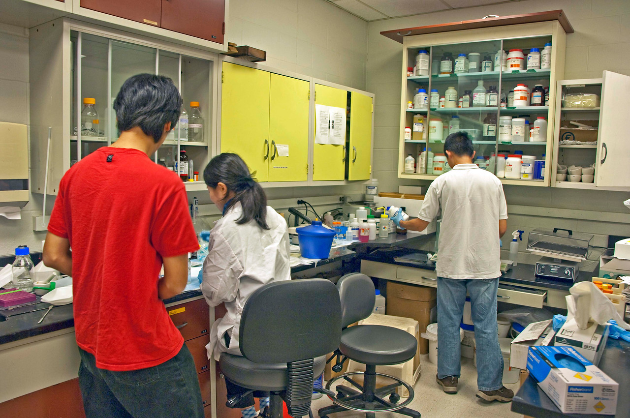 Photo: Researchers at work in one of the research laboratories in Plant Pathology Building on the Ohio Agricultural Research and Development Center campus.  Role in Wayne County's Ag-Bio Cluster: International leader in agricultural research and development, new business incubator, higher education leader, agricultural extension and services.  Website: http://www.oardc.ohio-state.edu/