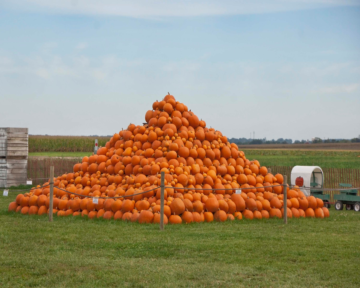 Photo: Pumpkin Pyramid at Ramseyer Farms near Wooster, Ohio.  Role in Wayne County's Ag-Bio Cluster: Ag-tourism venue and generator, practical agriculture education,  potato and pumpkin grower, entertainment and recreation.