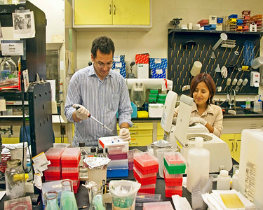Photo: Researchers at work in one of the research laboratories in Plant Pathology Building on the Ohio Agricultural Research and Development Center.  Role in Wayne County's Ag-Bio Cluster: International leader in agricultural research and development, new business incubator, higher education leader, agricultural extension and services.  Website: http://www.oardc.ohio-state.edu/