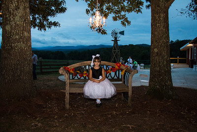 Cass-Wedding-Reception-Summit-Farm-Ellijay-Polly-Bouker-Photography (17 of 98)
