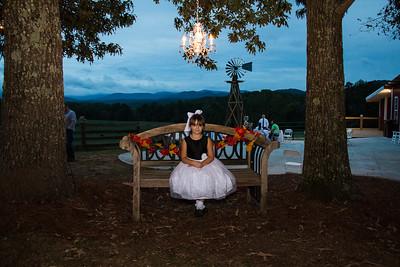 Cass-Wedding-Reception-Summit-Farm-Ellijay-Polly-Bouker-Photography (17 of 98)