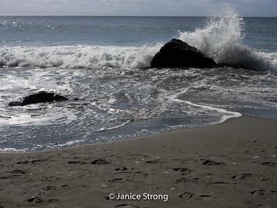 Janice-Strong-Vancouver Island-1032