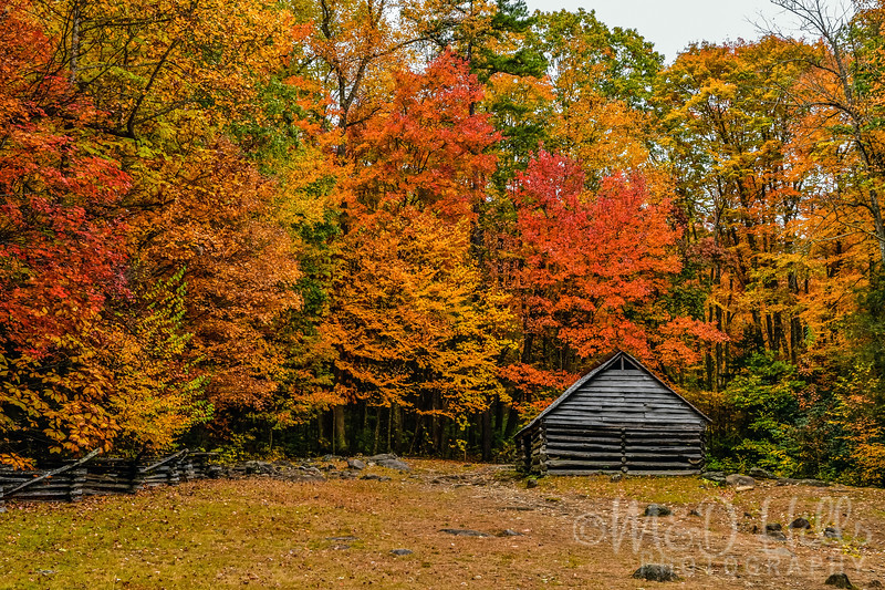 Autumn Peaks At The Bales Barn