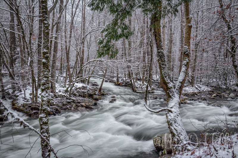 Winter At The Confluence