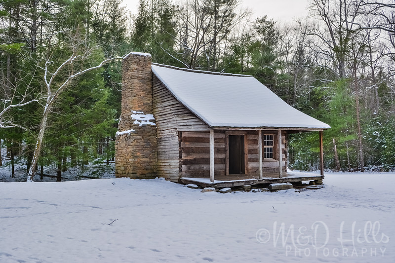 Winter At Carter's Place