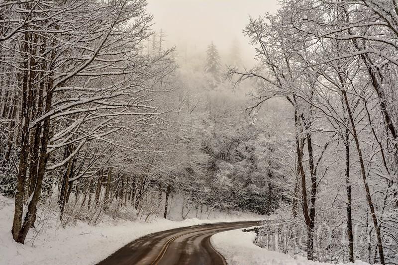 A Winter's Drive Up Newfound Gap