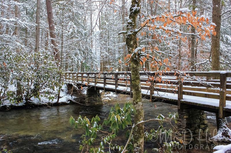 Wintertime At Abrams Bridge