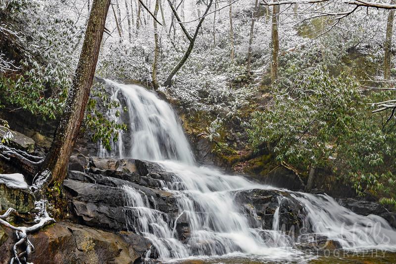 Winter Snow At Laurel Falls