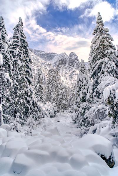 A snow covered Yosemite Creek