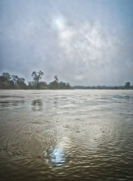 A foggy morning along the American River
